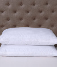 Classic-810038-Naked-Goose-Pillow-Lifestyle-6